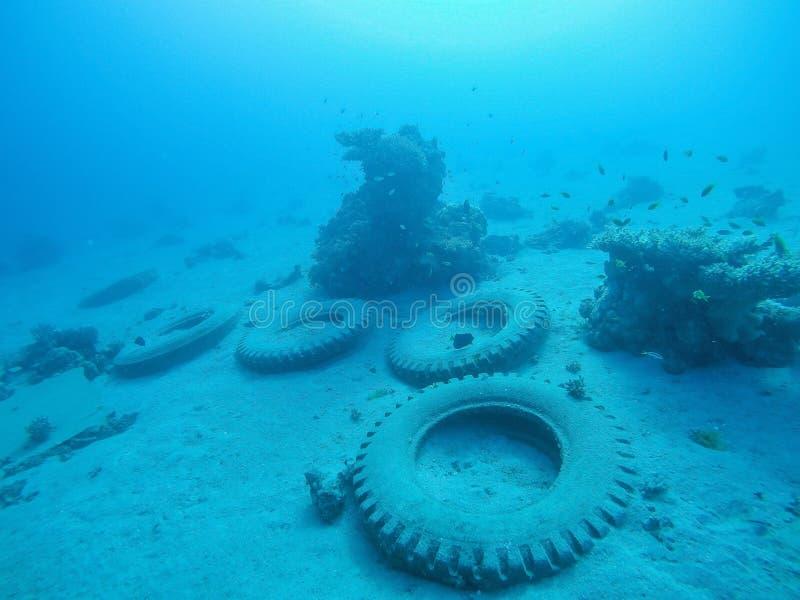 Автошины на глубине стоковое фото