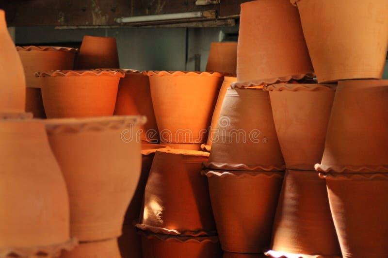 агашко стоковое фото