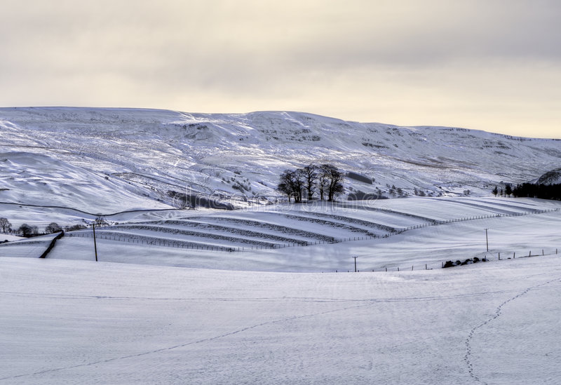 аграрное место снежное стоковая фотография