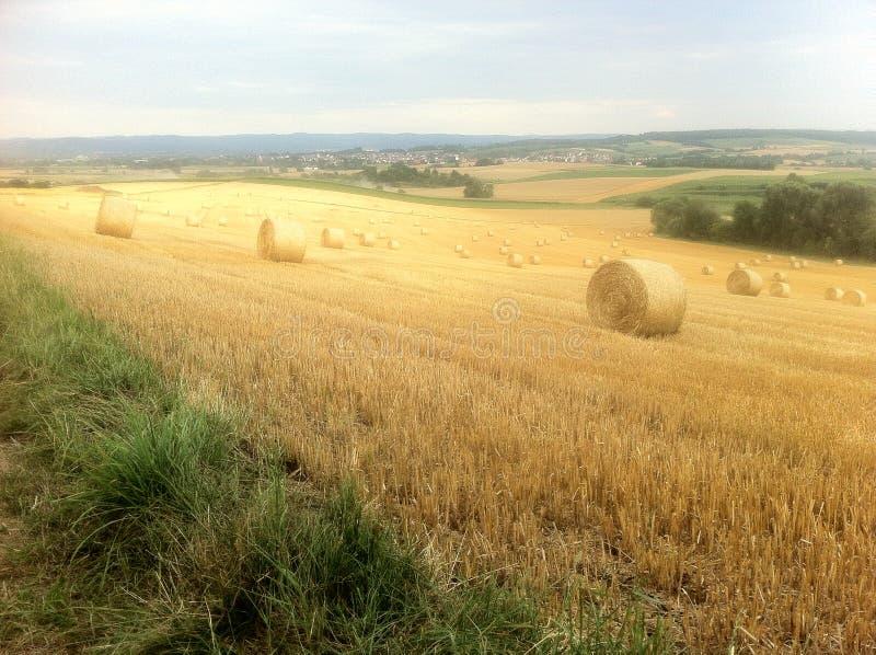 аграрные красивейшие крены ландшафта сена стоковая фотография