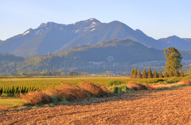 Аграрные разнообразие и землепользование стоковая фотография rf