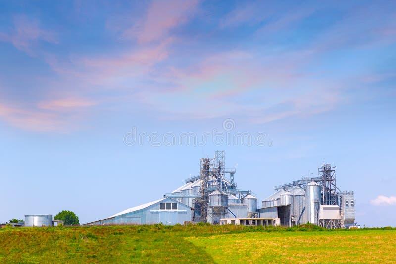 Аграрные силосохранилища для хранения и засыхания зерен, пшеницы, мозоли, сои, солнцецвета стоковая фотография rf