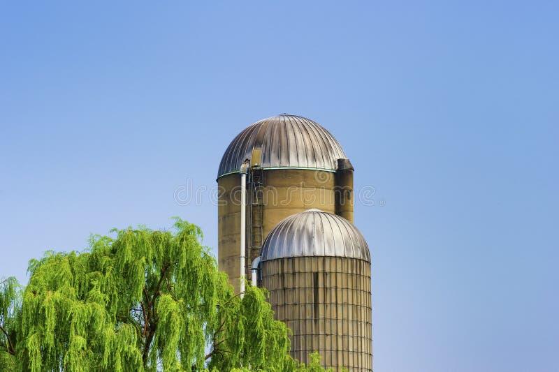 Аграрные силосохранилища сельской Западной Вирджинии стоковые фотографии rf