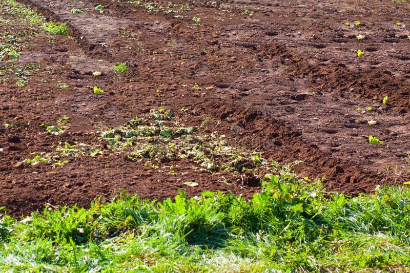 Аграрный край с плодородной почвой в Астурии стоковые фотографии rf
