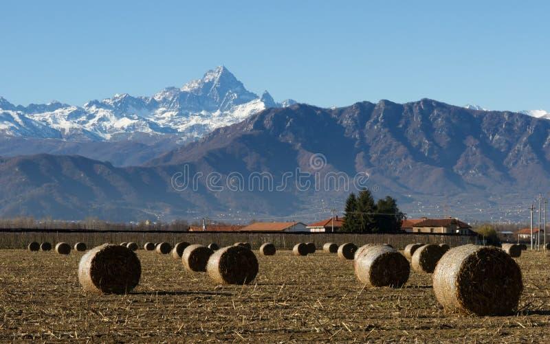 Аграрный мир в провинции Cuneo с Monviso, короля камня на заднем плане стоковое фото