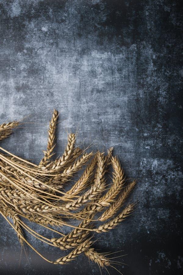 Аграрный натюрморт от ушей пшеницы на каменной предпосылке стоковое изображение