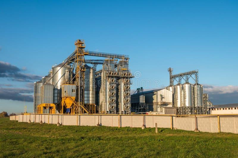 Агро-обработка завода для обработки и силосохранилищ для чистки засыхания и хранения сельскохозяйственных продуктов, муки, хлопье стоковые фото
