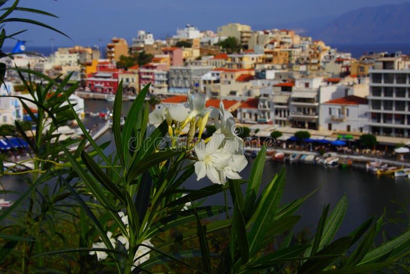 ажио Крит Греция nikolaos стоковое фото rf