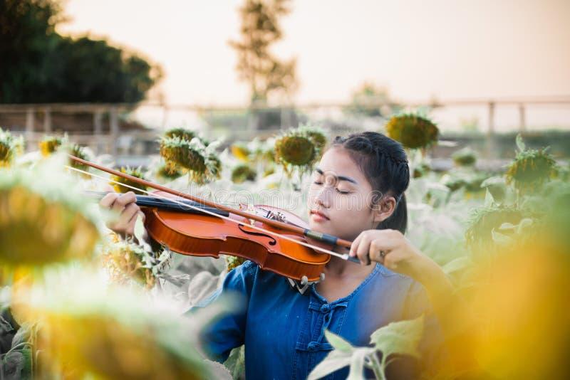 Азиатская девушка играя скрипку в тумане поля цветка солнца стоковое изображение rf