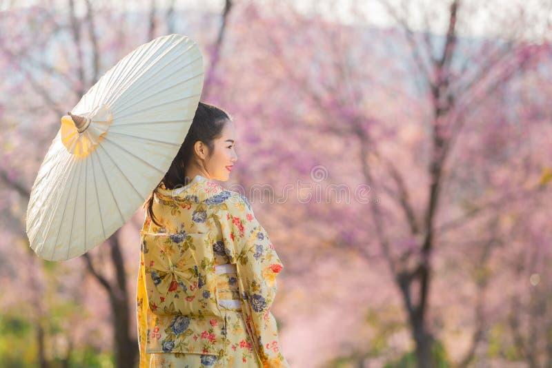 Азиатская красивая женщина нося традиционные японские кимоно и вишневый цвет весной, Япония стоковые изображения rf