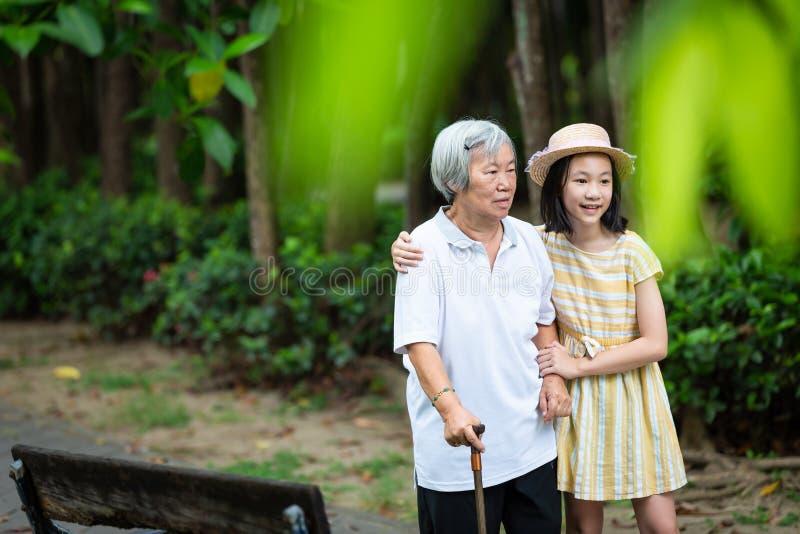Азиатская маленькая девочка поддерживая старшую женщину с идя ручкой, счастливой усмехаясь бабушкой и внучкой в парке, пожилом стоковые фотографии rf