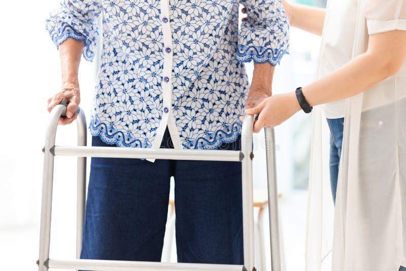Азиатская молодая женщина помогая старшей женщине в использовать ходока во время реабилитации, конца вверх человека осуществляюще стоковые изображения rf