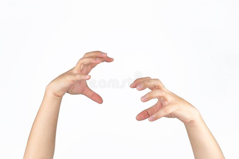 Азиатская мужская рука открывает ладонь и пост, как когти животного, в студии светло-изолированный белый фон с вырезанным контуро стоковые фотографии rf