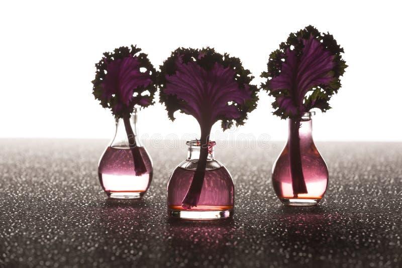 Азиатские черенок листовой капусты в вазах стоковое фото