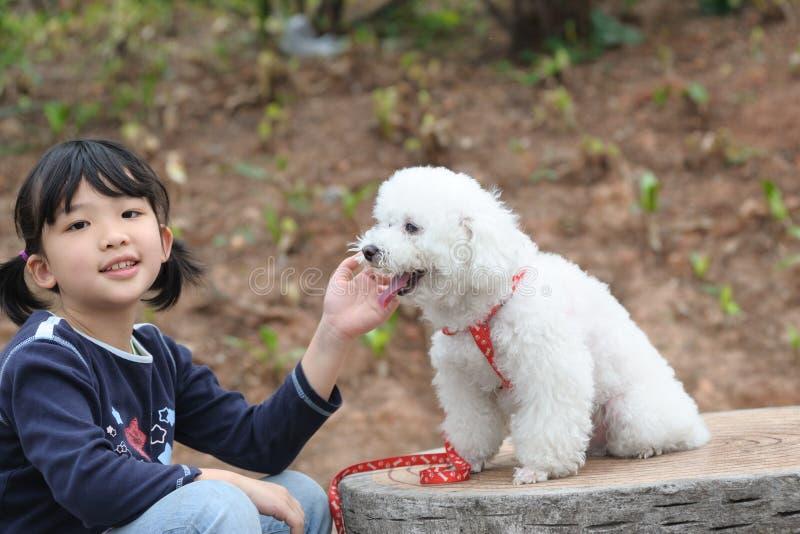 азиатский играть малыша собаки стоковые фото