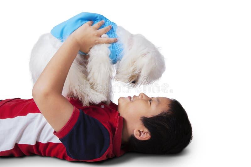 Азиатский мальчик играя мальтийсную собаку стоковое фото