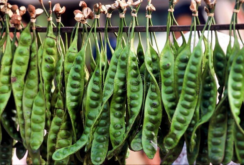 азиатский овощ стоковые фото