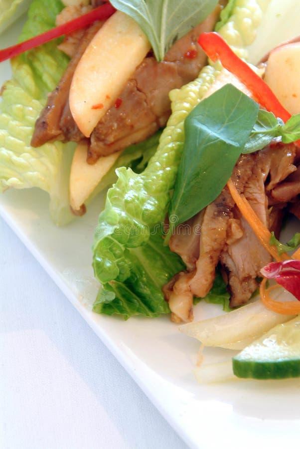 азиатский салат утки стоковое фото