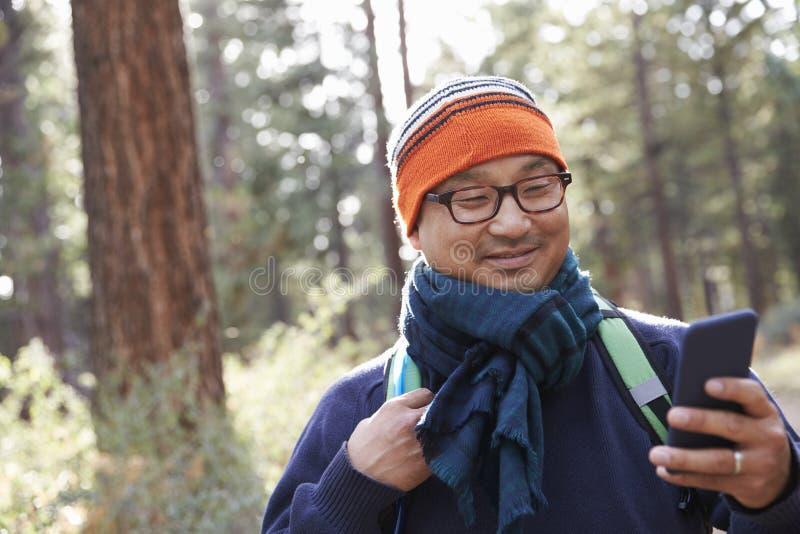 Азиатский человек используя smartphone в лесе стоковые фото