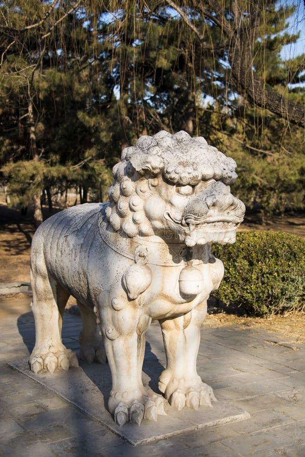 Азия Китай, камень высекая, лев стоковая фотография