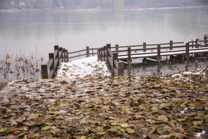 Азия Китай, Пекин, парк chaoyang, пейзаж зимы, деревянный мост, лиственный стоковое фото