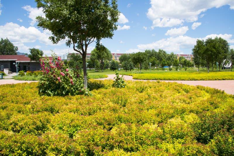 Азия Китай, Пекин, река Forest Park Guishui, пейзаж сада, цветники, стоковые фотографии rf