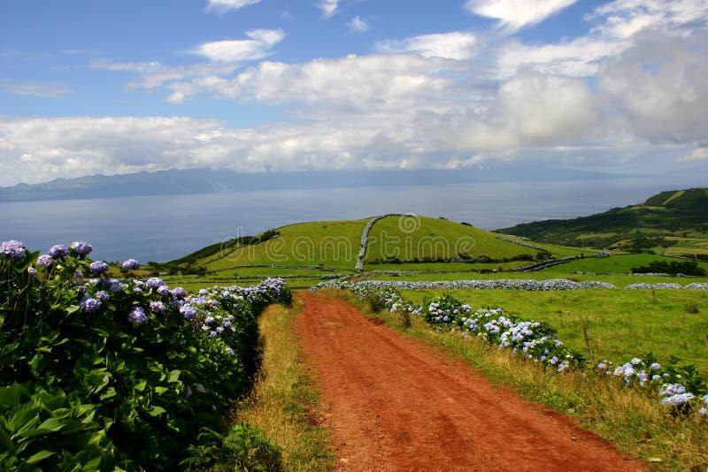 Азорские островы стоковое изображение rf