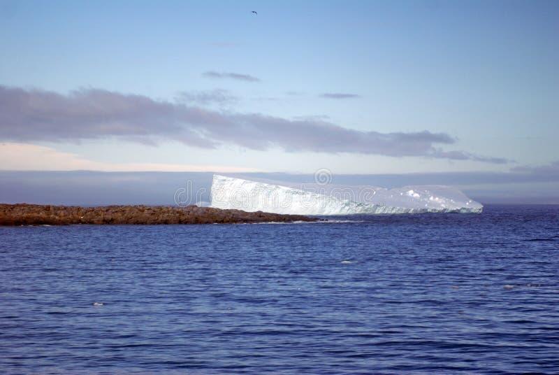 Айсберг в Антарктике стоковая фотография