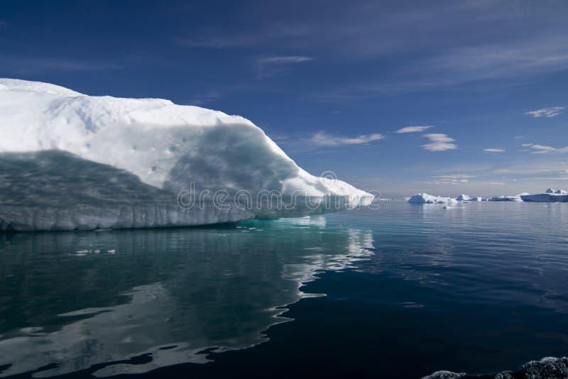 Айсберг в Антарктике стоковые изображения