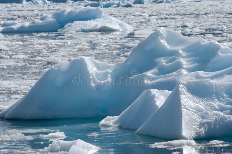 айсберг поля стоковая фотография rf