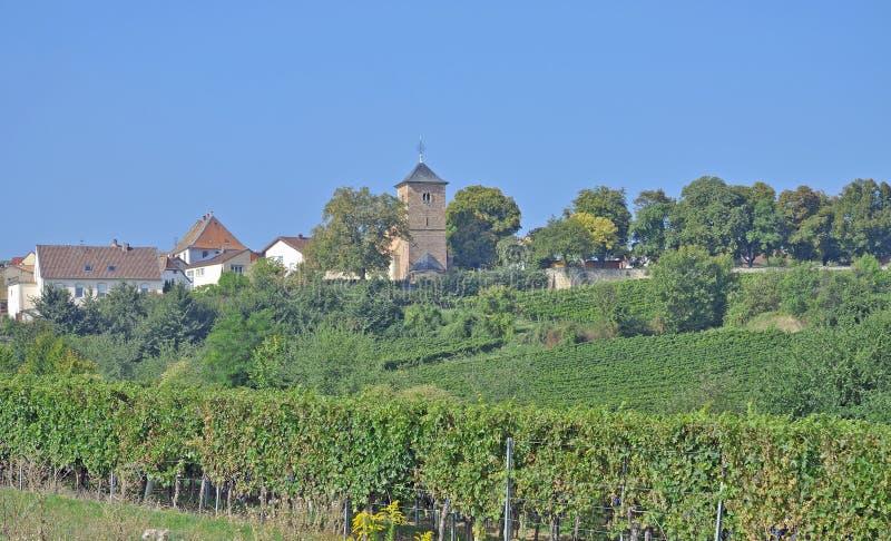 Айсберг Herxheim am, немецкий винный маршрут, Palatinate стоковое фото rf