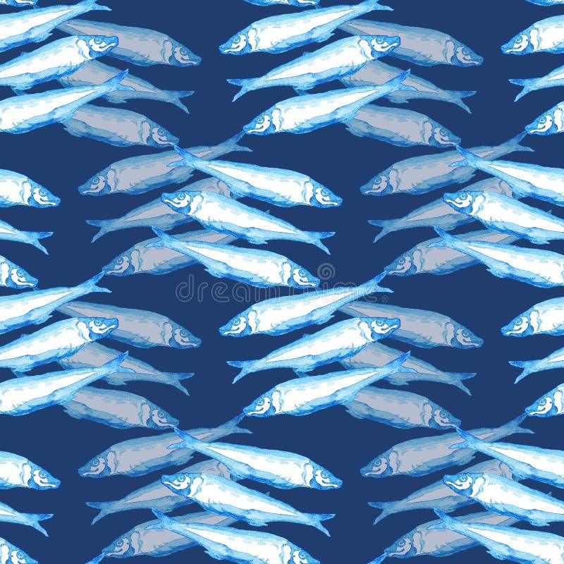 Акварель вычерченной морской безшовной картины руки голубая группа в составе Атлантика рыбы скумбрии на темно-синей предпосылке иллюстрация вектора