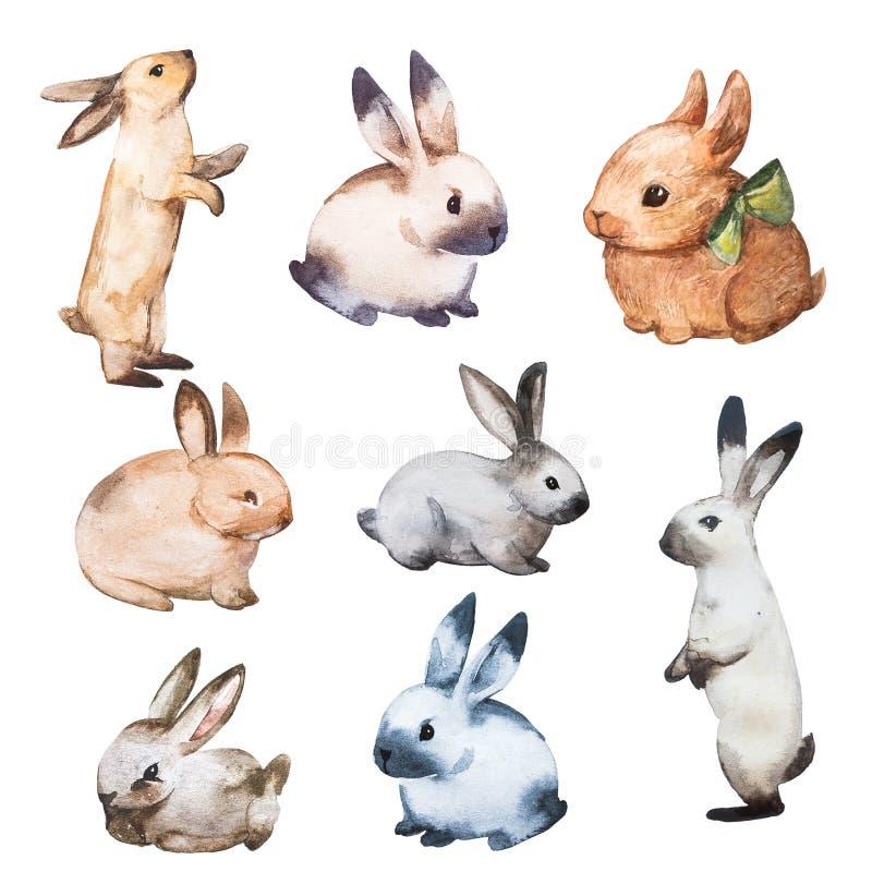 Акварель кролика установила плоскую иллюстрацию Изолированное красочное милое собрание зайчика младенца Милый маленький характер  иллюстрация штока
