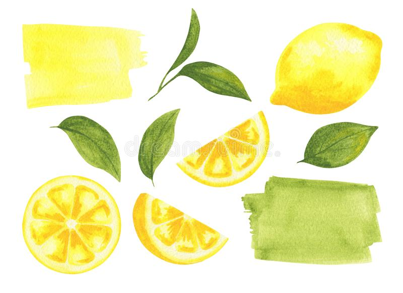 Акварель установила лимонов с листьями стоковое фото rf