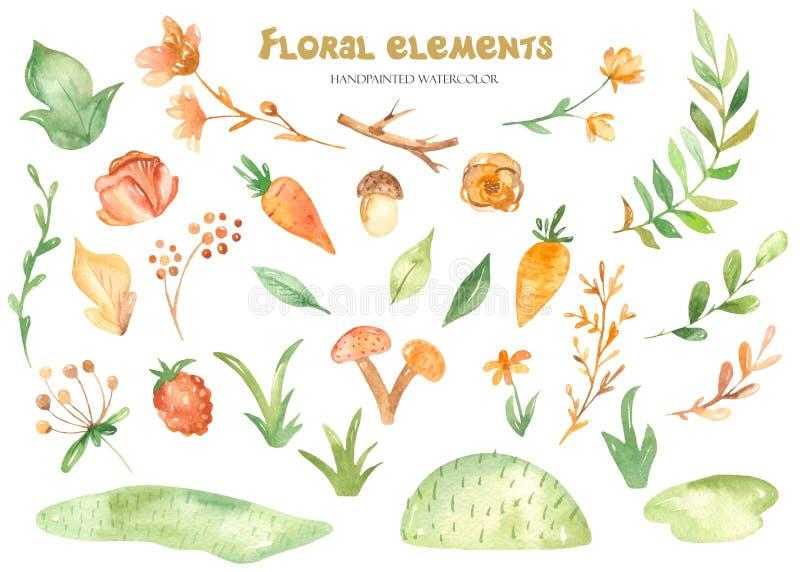 Акварель установила с заводами, цветками, плодами и ягодами иллюстрация вектора