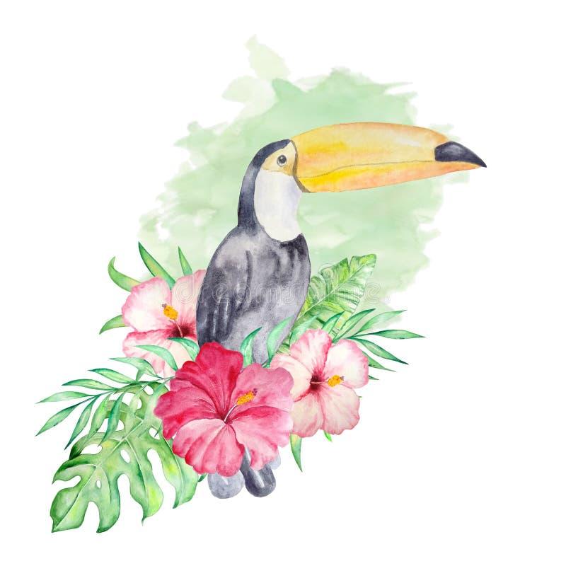 Акварель toucan с цветками на зеленой предпосылке иллюстрация вектора