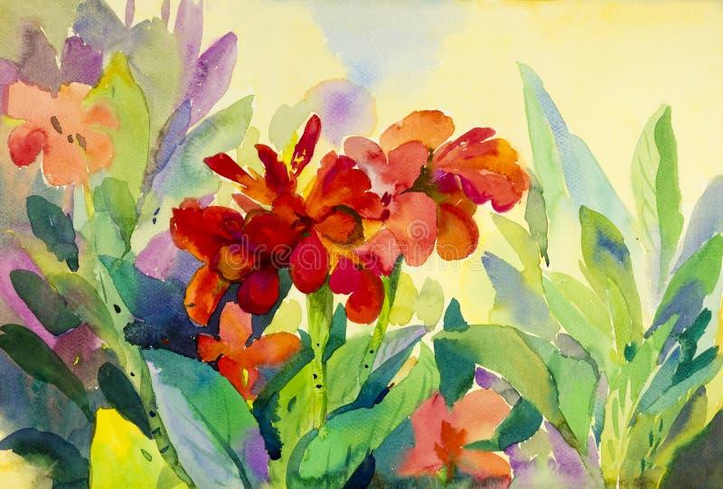 Акварель цветет крася первоначально красочное цветков лилии canna иллюстрация вектора