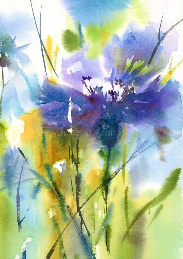 Акварель Cornflower цветет покрашенная рука иллюстрации иллюстрация штока