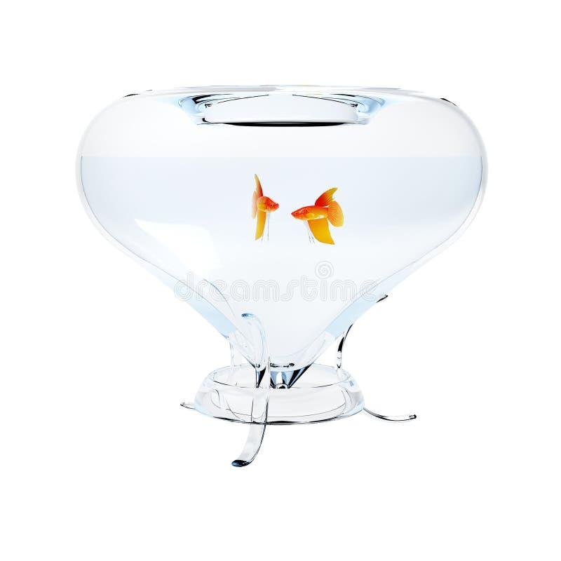 аквариум удит золото стоковая фотография