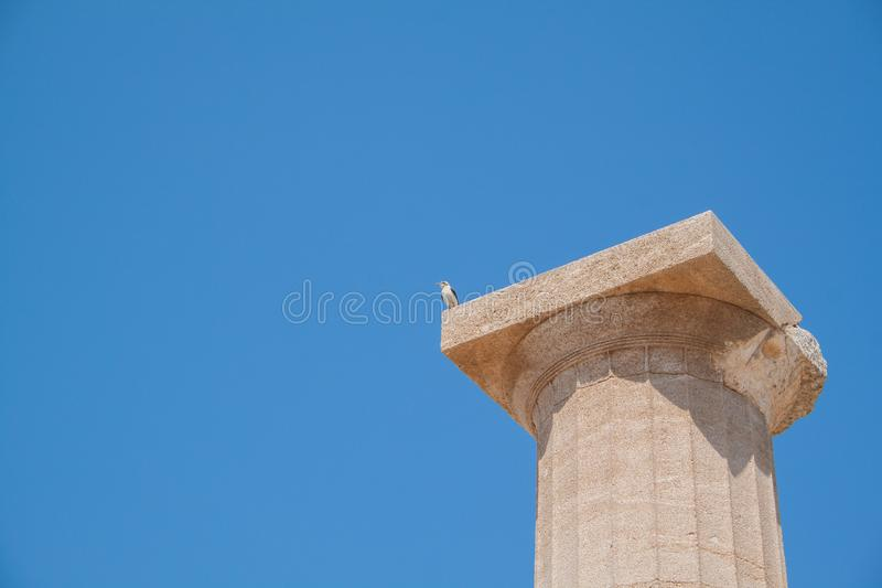 Акрополь стоковое фото