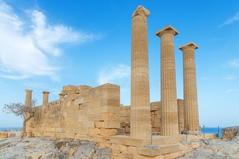 Акрополь древнегреческия Вид спереди столбцов и стен около дерева растет стоковое изображение