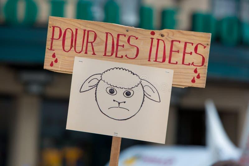 Активисты Gaia бельгийца протестуют на улицах Брюсселя стоковые изображения