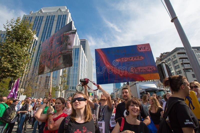 Активисты Gaia бельгийца протестуют на улицах Брюсселя стоковое изображение