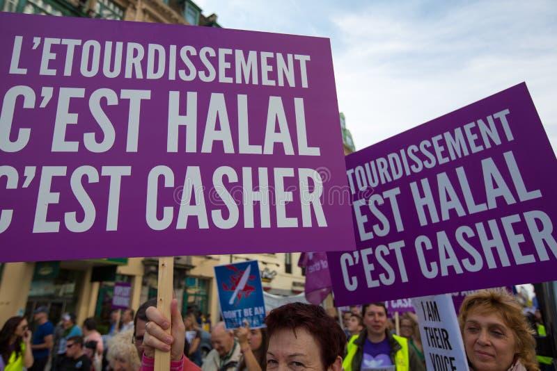 Активисты Gaia бельгийца протестуют на улицах Брюсселя стоковое изображение rf