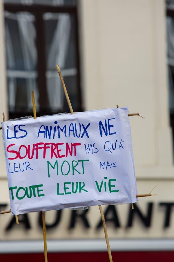 Активисты Gaia бельгийца протестуют на улицах Брюсселя стоковое фото