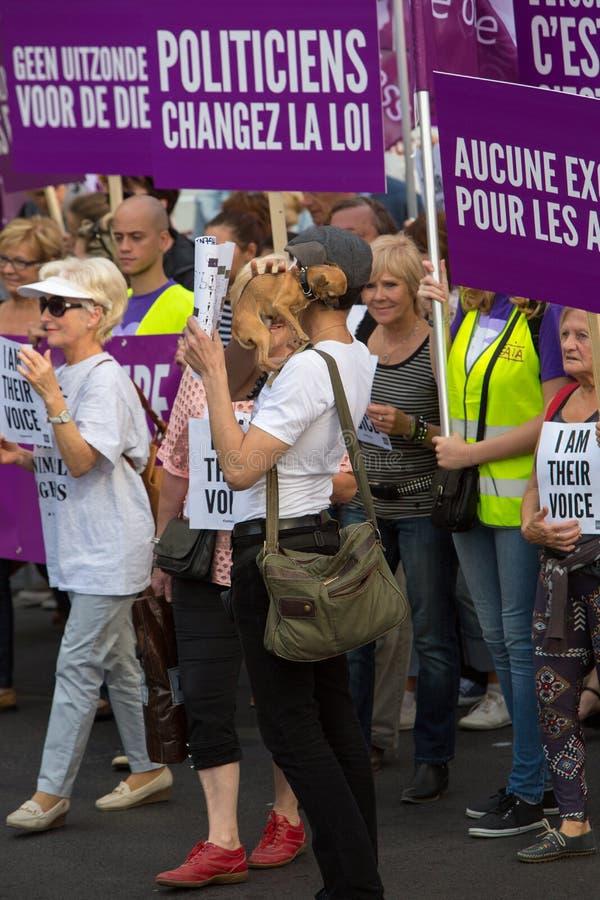 Активисты Gaia бельгийца протестуют на улицах Брюсселя стоковое фото rf