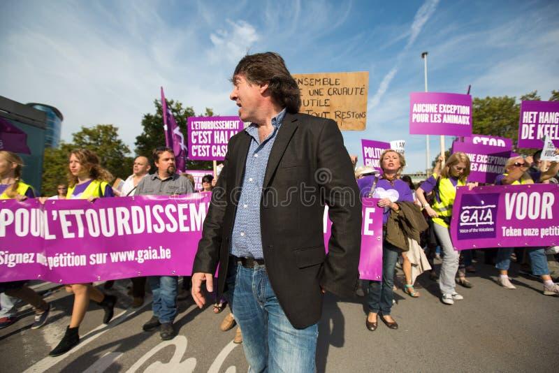 Активисты Gaia бельгийца протестуют на улицах Брюсселя стоковые изображения rf