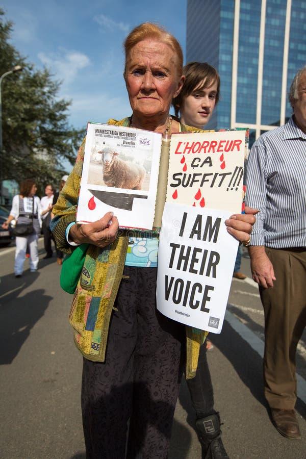 Активисты Gaia бельгийца протестуют на улицах Брюсселя стоковые фото