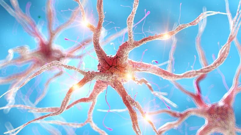 Активная человеческая нервная клетка иллюстрация штока