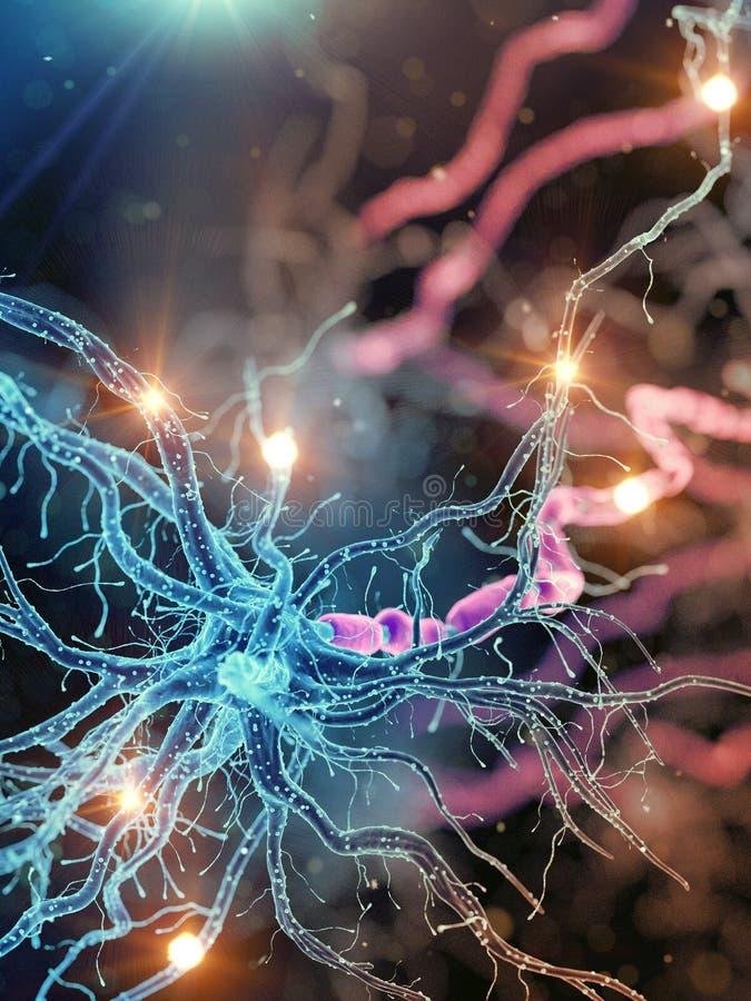 Активная человеческая нервная клетка иллюстрация вектора